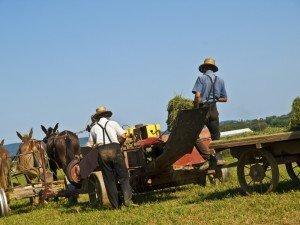 Comunidad Amish