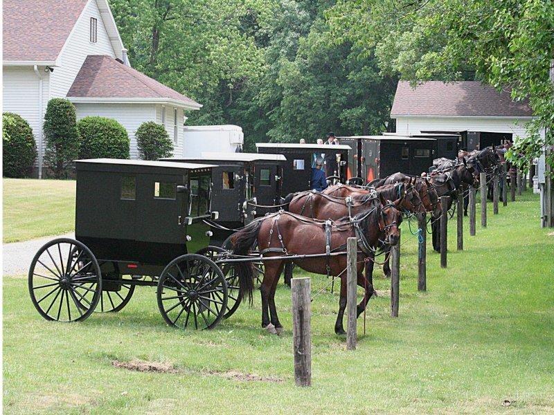 Carretas Amish